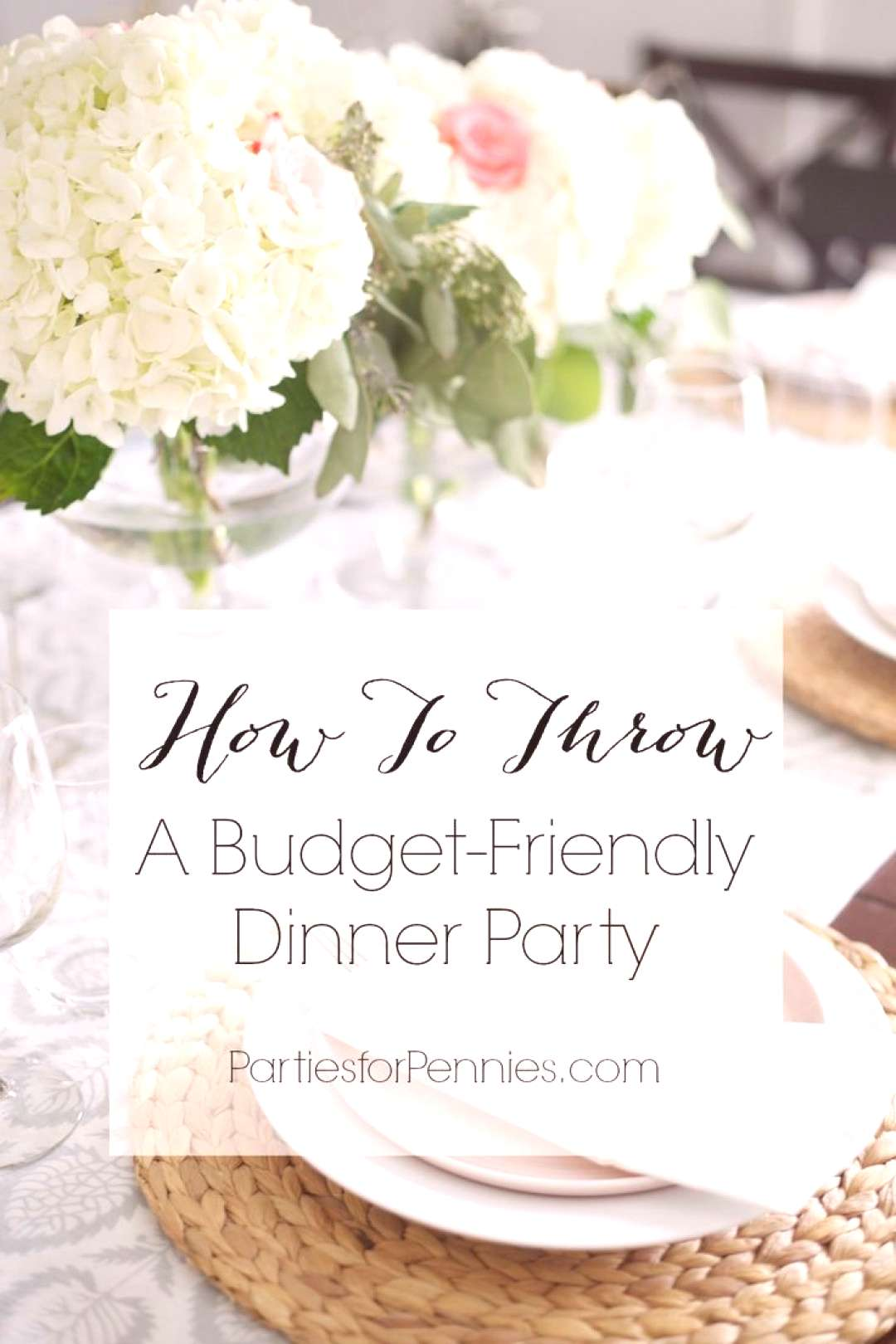 10 Budget Friendly Dinner Party Ideas - Parties for Pennies  10 Budget Friendly Dinner Party Ideas