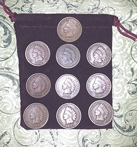 10 different Indian Head Cents Pennies in Gift Bag - 10
