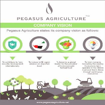 An investment in Pegasus Agriculture hydroponic farming is one of the most secure investments that