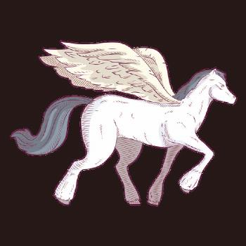 Pegasus horse colored coloured illustration ,