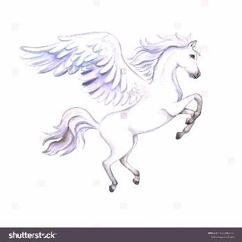 Pegasus with wings isolated on white background. White Horse. Watercolor. Illustration. Template Cl