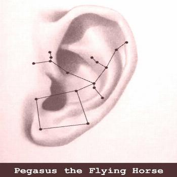 possible text that says Pegasus the Flying HorseYou can find Constellation piercing and more on our