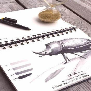 Rhinozeros beetle drawing with ink pens and watercolor brush markers -  Animal drawing of a realist