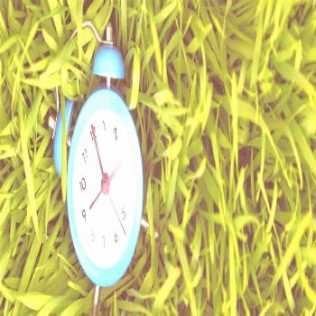 The Best Time to Plant Grass in Pennsylvania | Charlest...