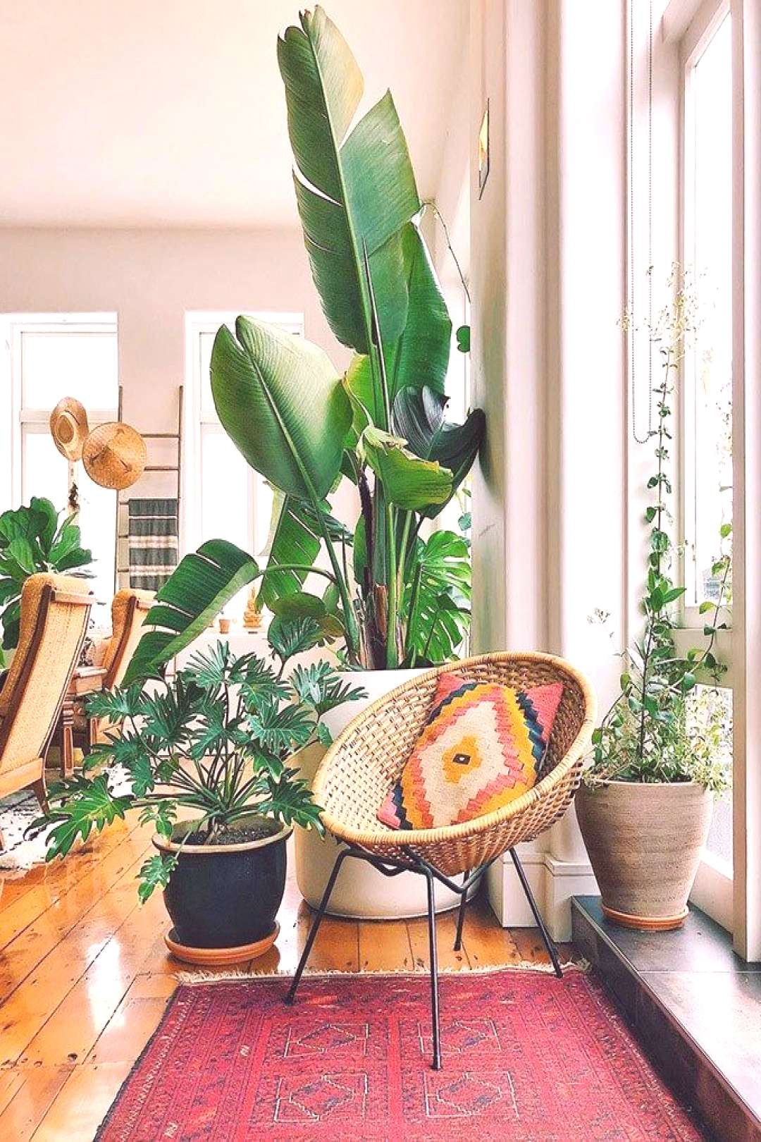 Boho Home Decor: 11 Tips That Show You How To Pull It Off | Posh Pennies -
