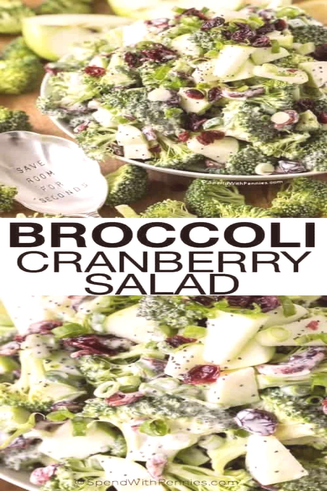 Broccoli Cranberry Salad amp Spend With Pennies Broccoli Cranberry Salad amp Spend With Pennies Spend