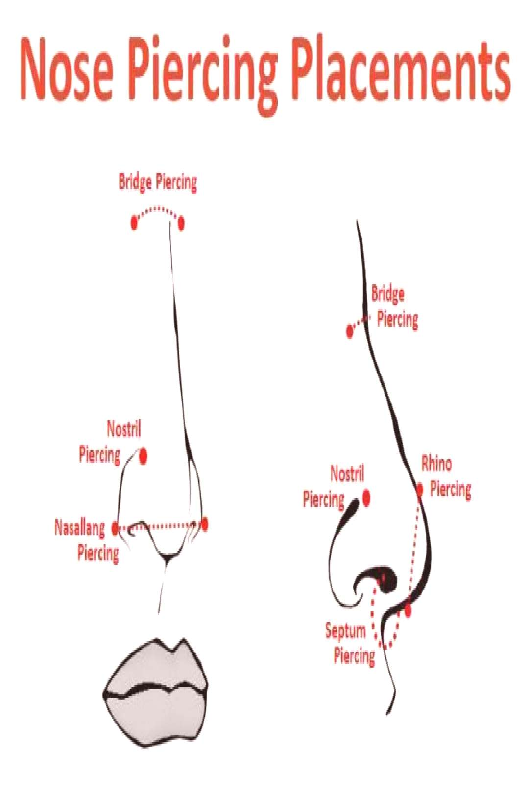 Good Pic Nose Piercings hole Popular A makeup piercing makes a vivid assertion,... - Good Pic Nos