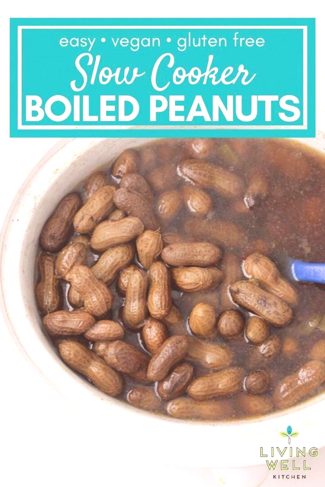 How to make boiled peanuts in the crockpot. This salty, spicy, garlicky Slow Cooker Jalapeño Garli