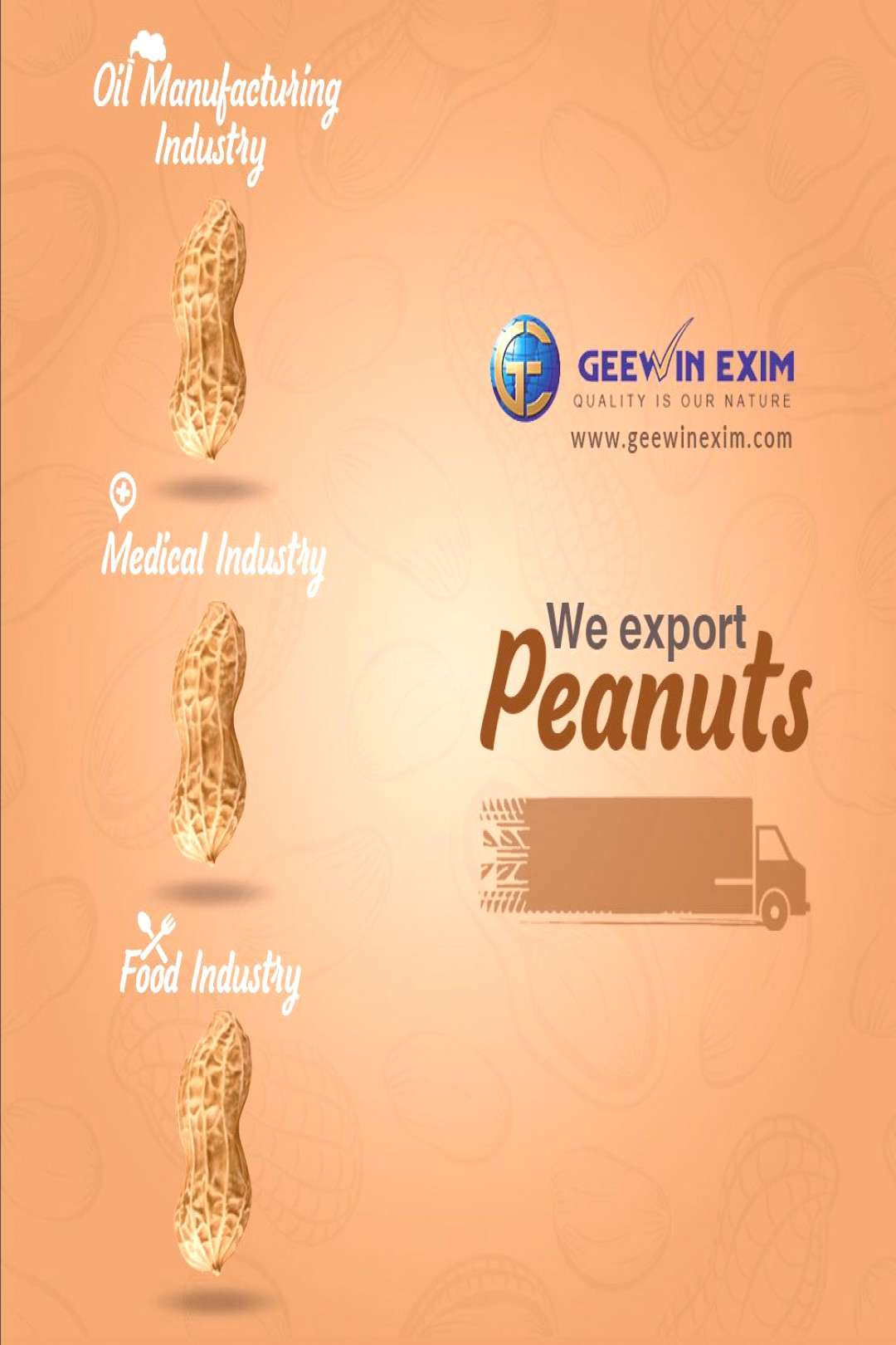 Peanuts - Geewin Exim We supply raw as well as salted peanuts as per the requirement of our clients