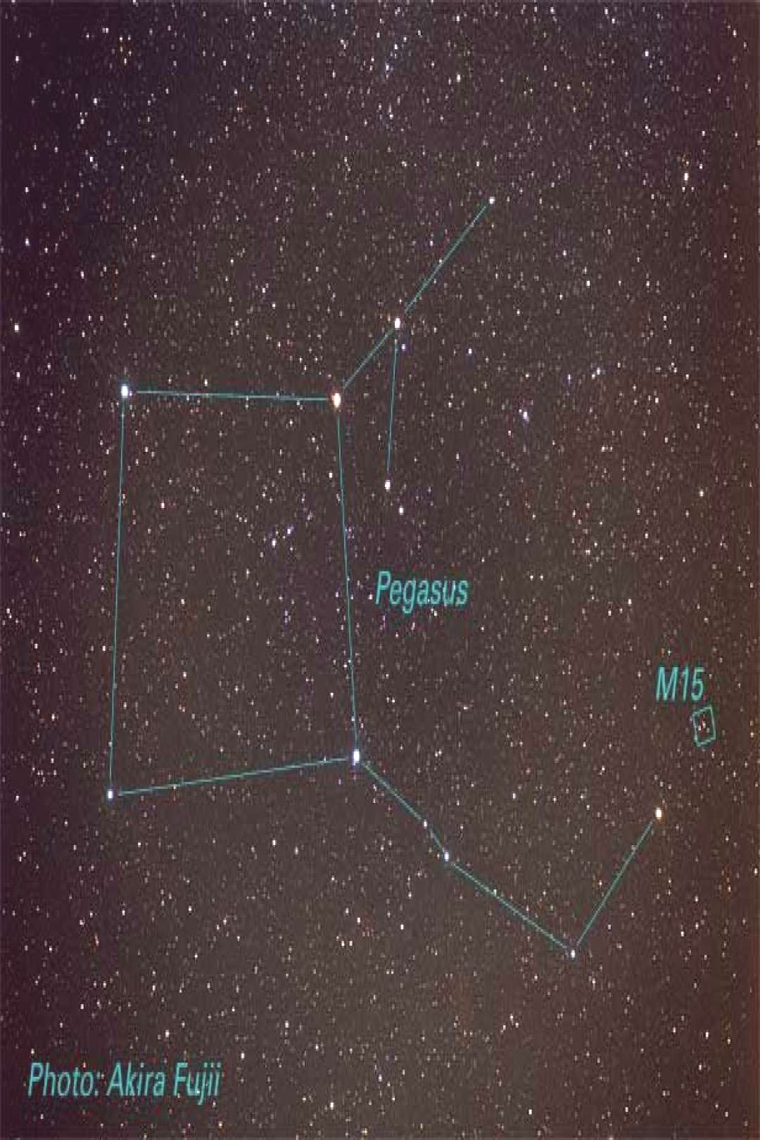 Pegasus: The winged horse - Pegasus, a constellation in the northern sky, was on... ,  Pegasus: The