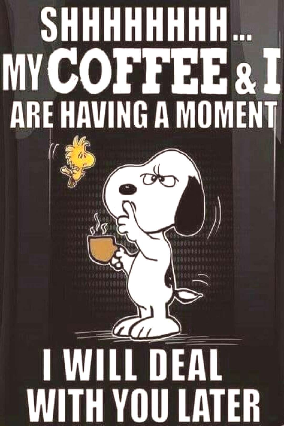Shhh. My coffee and I are having a moment. I will deal with you later. — Snoopy