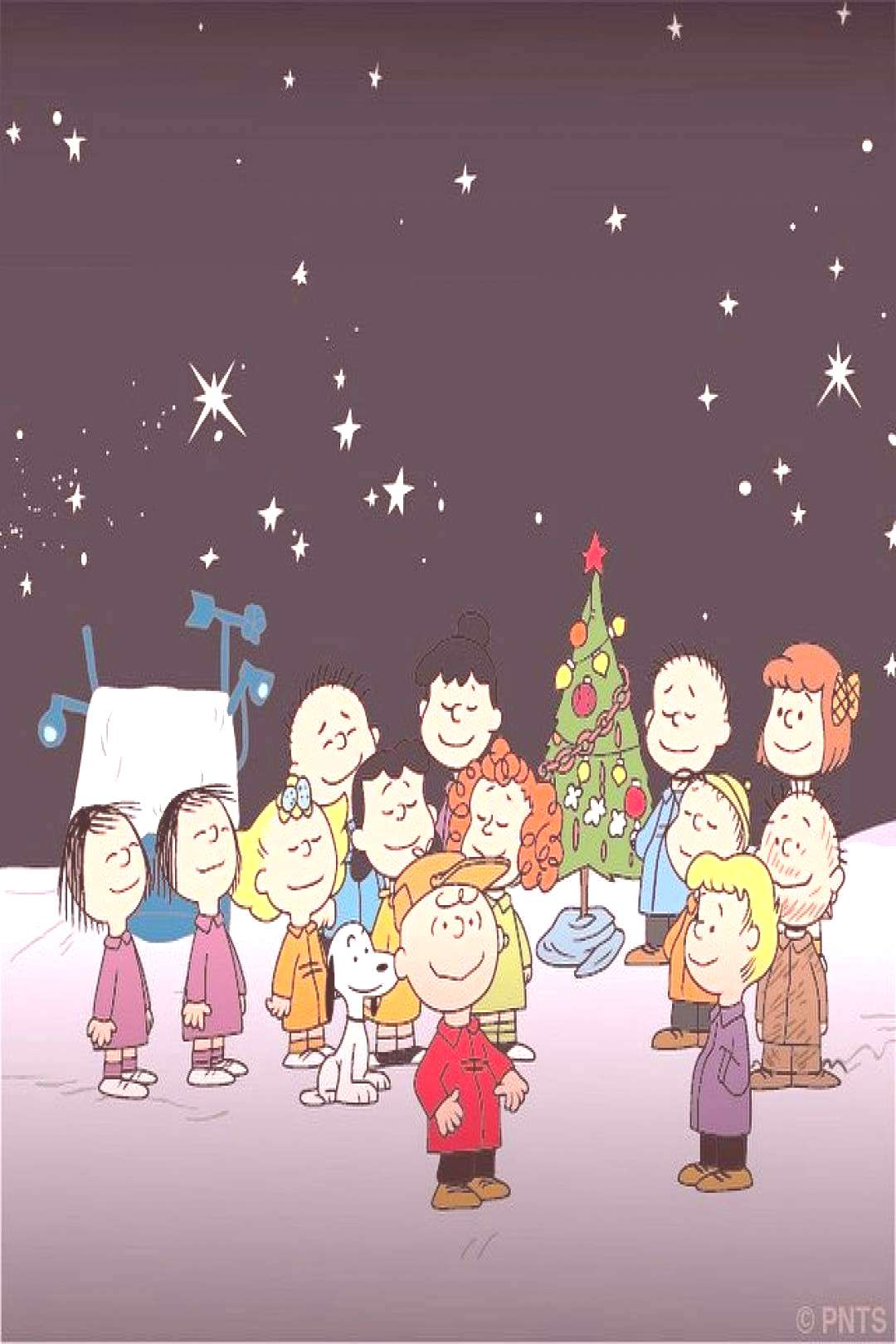 Snoopy And The Peanuts Gang...