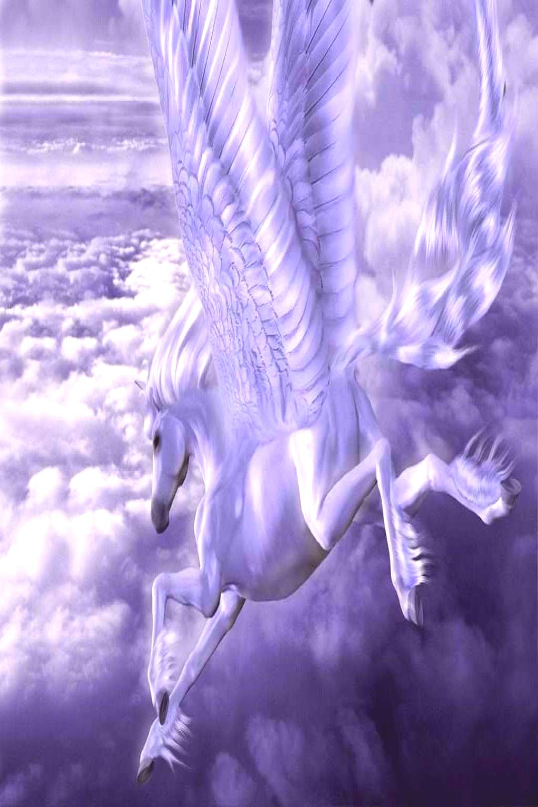 White Pegasus Wallpaper Phone 7 Top White Pegasus Wallpaper Phone