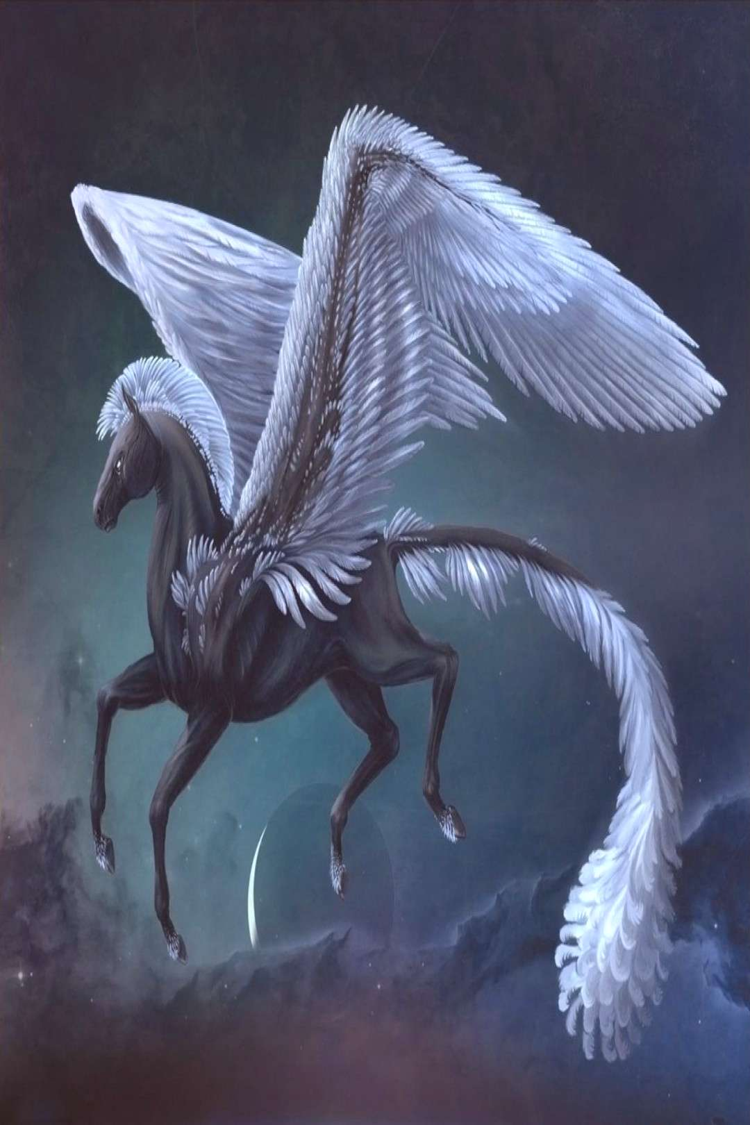 White Pegasus Wallpapers High Quality 9 Awesome White Pegasus Wallpapers High Quality